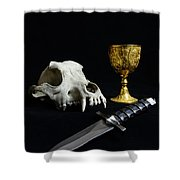 The Quest Shower Curtain by Paul Ward