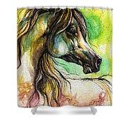The Rainbow Colored Arabian Horse Shower Curtain by Angel  Tarantella