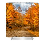 The Road Less Traveled Shower Curtain by Jon Burch Photography