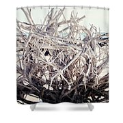 The Roots Shower Curtain by Lisa Russo
