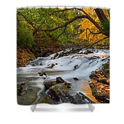 The Still River Shower Curtain by Bill  Wakeley