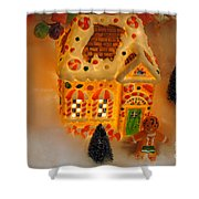 The Toy Store Shower Curtain by Skip Willits