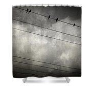 The Trace 11.24 Shower Curtain by Taylan Soyturk