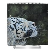The White Tiger And The Butterfly Shower Curtain by Louise Charles-Saarikoski
