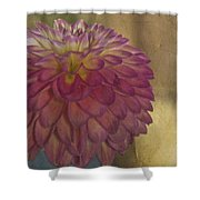 There's Always Next Year Shower Curtain by Trish Tritz