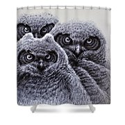Three Amigos Shower Curtain by Rick Hansen