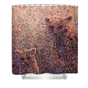 Three Bears Shower Curtain by James W Johnson
