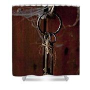 Three Keys Shower Curtain by Georgia Fowler