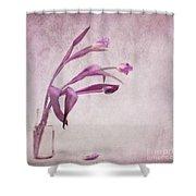 Three Of Us Shower Curtain by Priska Wettstein