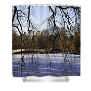 Through The Branches 1 - Central Park - Nyc Shower Curtain by Madeline Ellis