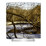 Through The Branches 2 - Central Park - NYC Shower Curtain by Madeline Ellis