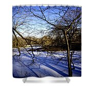 Through The Branches 4 - Central Park - Nyc Shower Curtain by Madeline Ellis