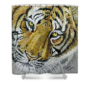 Tiger Painting Shower Curtain by Michelle Wrighton