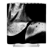 Tiny Dancer Shower Curtain by Sharon Cummings
