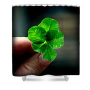 To Dream Shower Curtain by Karen Wiles