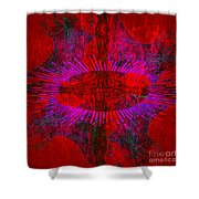 Togetherness Shower Curtain by Stelios Kleanthous
