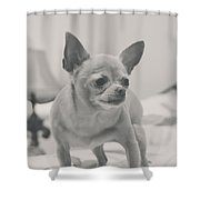 Tough Girl Shower Curtain by Laurie Search