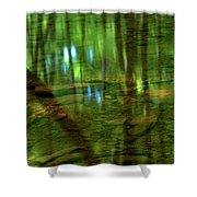 Translucent Forest Reflections Shower Curtain by Adam Jewell
