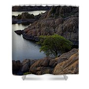 Tree At Sunset At The Granite Dells Arizona Shower Curtain by Dave Dilli