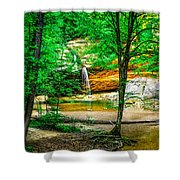 Tree roots Shower Curtain by Optical Playground By MP Ray