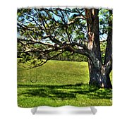 Tree with a Swing Shower Curtain by Kaye Menner