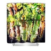 Trees Shower Curtain by Daniel Janda