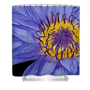 Tropical Day Flowering Waterlily Shower Curtain by Susan Candelario