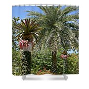 Tropical Garden Shower Curtain by Kim Hojnacki