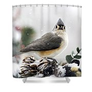 Tufted Titmouse In The Snow Shower Curtain by Christina Rollo