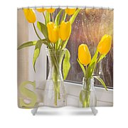 Tulips Shower Curtain by Amanda And Christopher Elwell