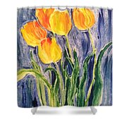 Tulips Shower Curtain by Sherry Harradence