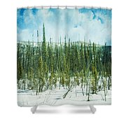 tundra forest Shower Curtain by Priska Wettstein