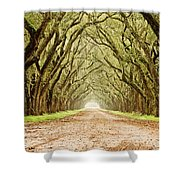 Tunnel In The Trees Shower Curtain by Scott Pellegrin