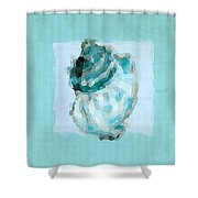 Turquoise Seashells Vi Shower Curtain by Lourry Legarde