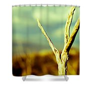 Twigs IIi Shower Curtain by Marco Oliveira