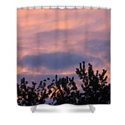 Twilight Beauty Shower Curtain by Sonali Gangane