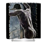 Twilight Shower Curtain by Steve Bogdanoff