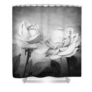 Twins Shower Curtain by Nataly Rubeo