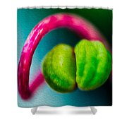 Twisted Beauty Shower Curtain by Omaste Witkowski