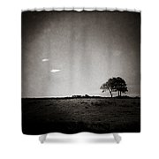 Two Clouds And A Tree Shower Curtain by Dave Bowman