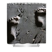 Two Left Feet Shower Curtain by Ramona Johnston