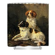 Two Spaniels Waiting For The Hunt Shower Curtain by Henriette Ronner Knip