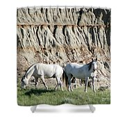 Two Wild White Stallions Shower Curtain by Sabrina L Ryan