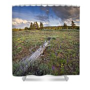 Under Stormy Skies Shower Curtain by Mike  Dawson