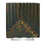 Under The Boardwalk Shower Curtain by Jack Zulli