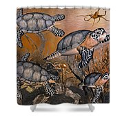 Under The Red Sea Shower Curtain by Betsy C  Knapp