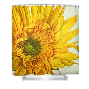 Unrivaled Shower Curtain by Heidi Smith