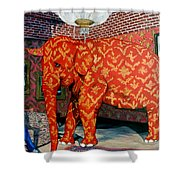Untitled Shower Curtain by Tom Roderick