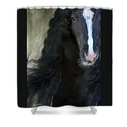 Valentino Dreams Shower Curtain by Fran J Scott