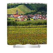 View Of Rodern From The Vineyards Of Alsace Shower Curtain by Greg Matchick